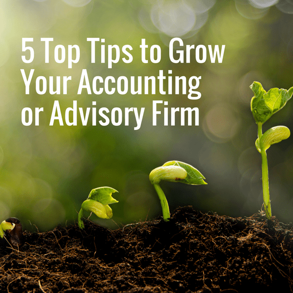 Grow accounting advisory firm idea
